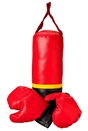 Hanging Punching Bag Set with Boxing Gloves